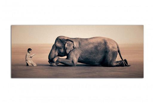 Фотокартина в интерьер Мальчишка и слон